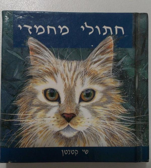 חתולי מחמדי - שי קטנטן -