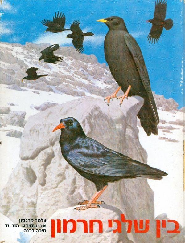 בין שלגי חרמון - תאור וציור בעלי חיים על ידי וולטר פרגסון - וולטר פרגסון