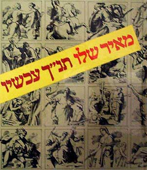תנ''ך עכשיו - כריכה קשה - מאיר שלו