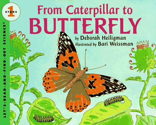 From Caterpillar to Butterfly  (Let's-Read-and-Find-Out Science, Stage 1) - Deborah Heiligman