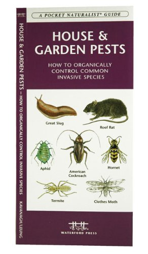 House & Garden Pests: Identification and Organic Control of Common