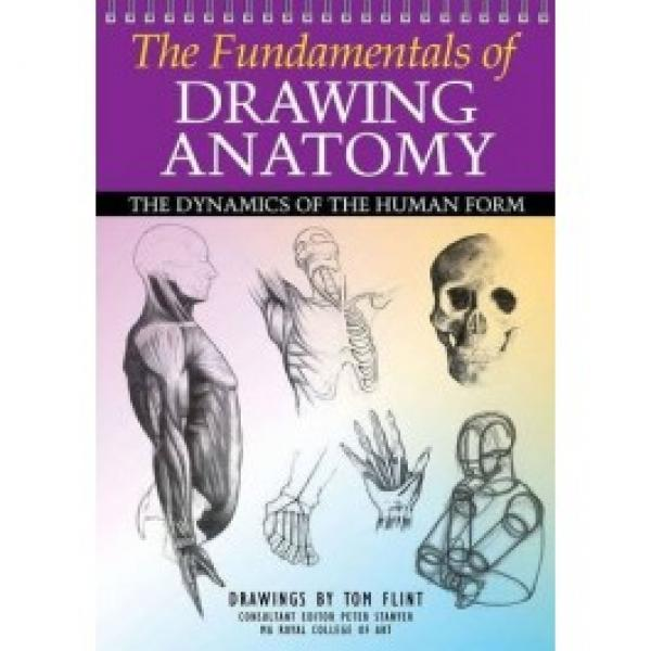 the fundamentals of drawing anatomy  - the drawing ofthe human form / tom flint