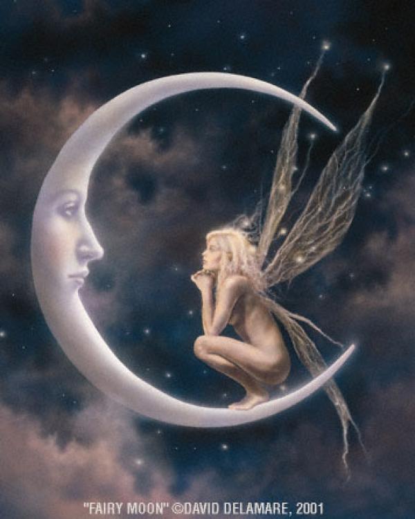 ~* פיית ירח *~