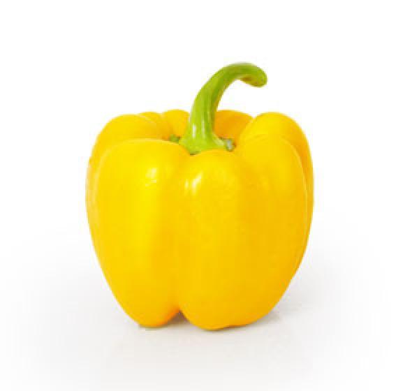 פלפלית צהובה