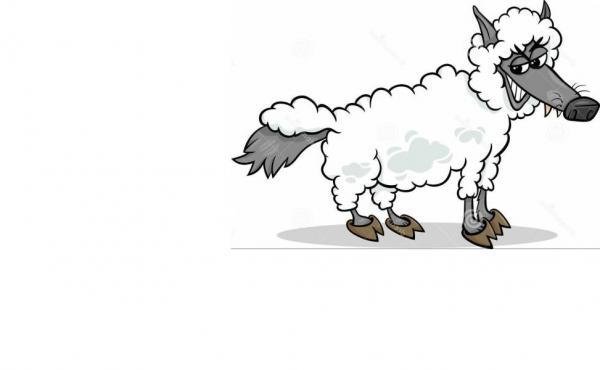כבש בעור זאב