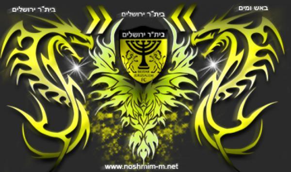 בר הברבור בן 17 מירושלים