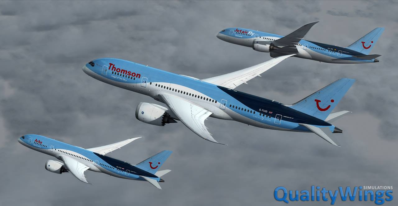 how to fly the qw 787