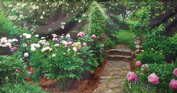 Garden path and flowers Scene 2 3m x 6m Backdrop