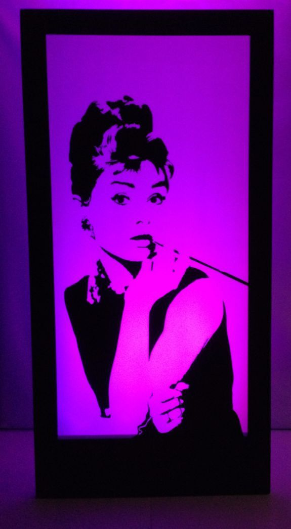 Audrey Hepburn Silhouette Panel