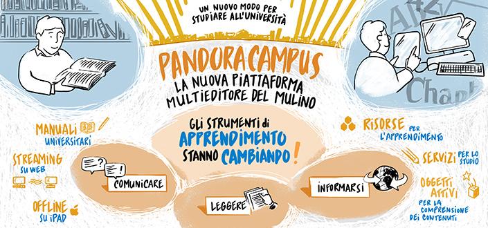 Pandoracampus