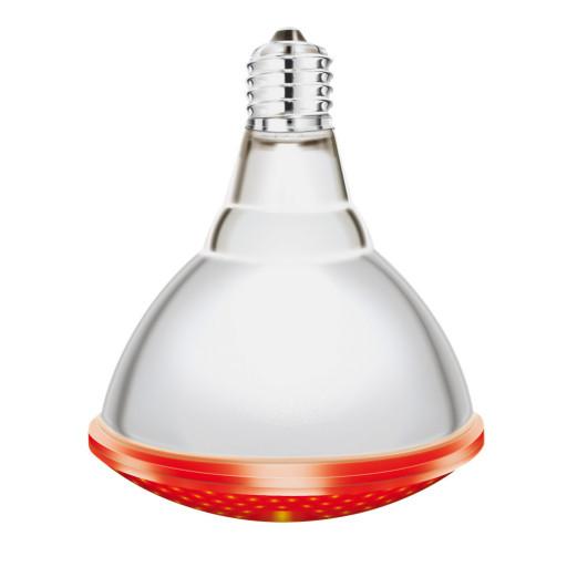 Lampe IR/PAR vis rouge Interheat 175W