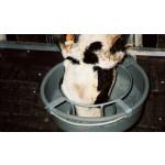 Anti-gaspi inox pour bassine 36 cm
