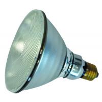 Ampoule PHILIPS IR/PAR blanche 100W