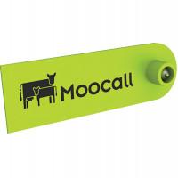 Boucles RFID - Moocall Heat