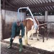 Portique lève patte pour bovin VINK