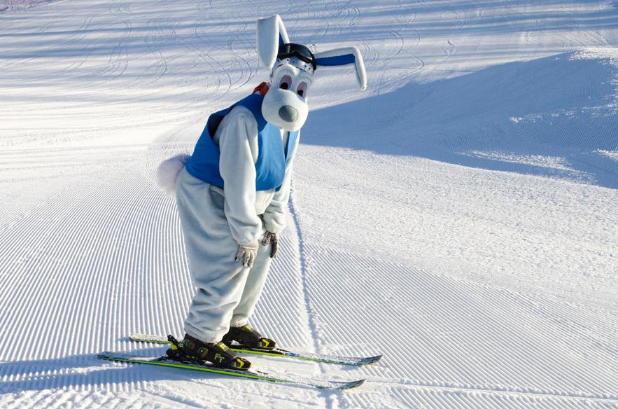 Wernerin hiihtokoulun kurssitarjonta on hiihtolomaviikoilla runsas. Katso lisätietoja lähimmän hiihtokeskuksen sivuilta.