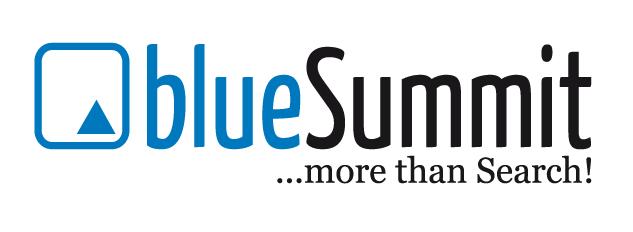 blueSummit Logo