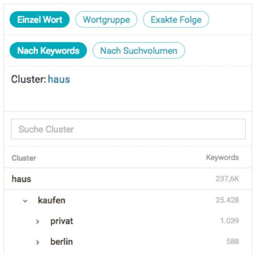 Searchmetrics: Keyword Clustering