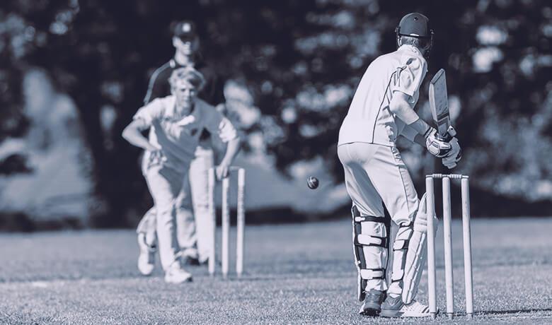 Cricket.jpg#asset:206