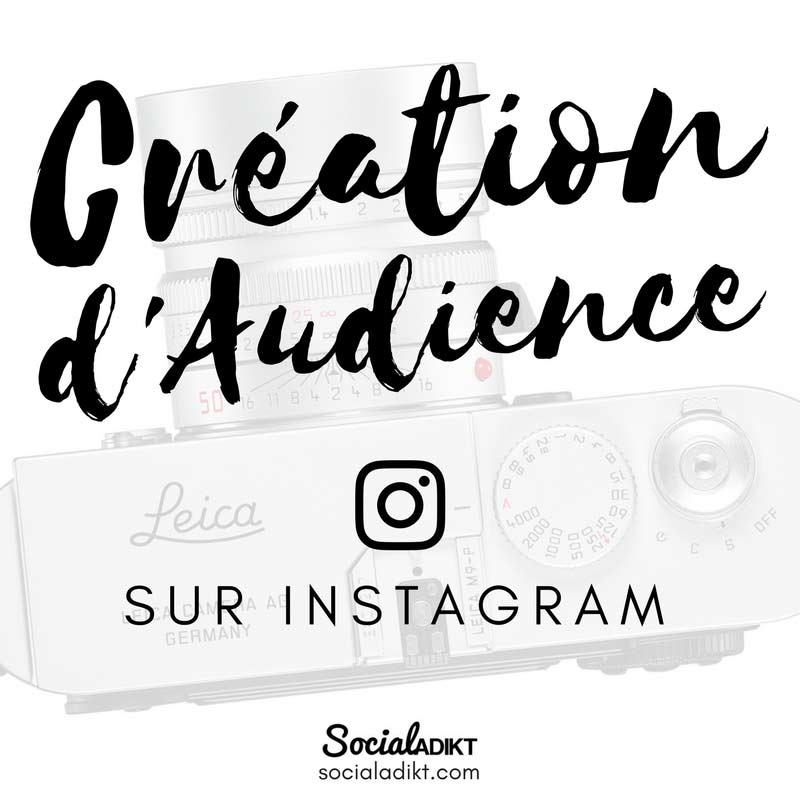 audience instagram