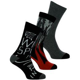 | Lote de 3 pares de calcetines clásicos - Algodón y nilón stretch