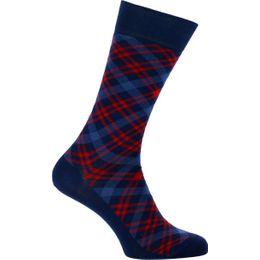 7481310 | 1 par de calcetines clásicos - Algodón y poliamida stretch