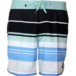 Eye Scallop 17 | Board shorts - Polyester