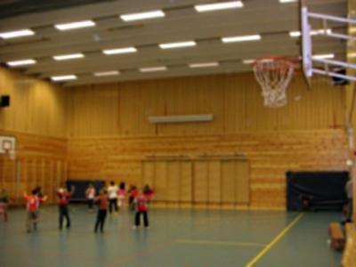 Nygårdslien-skole-volleyballhall.jpg