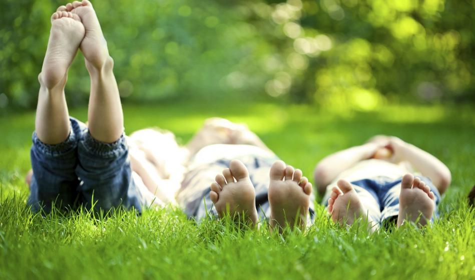 Avslapping i gresset.jpg