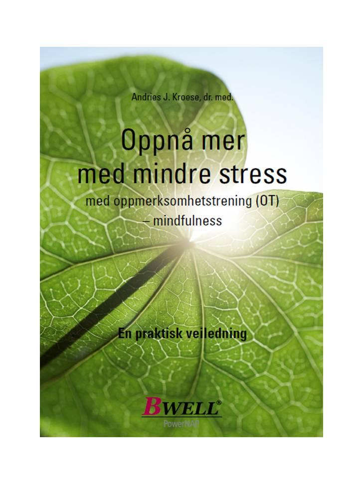 bilde-mindfulness.JPG