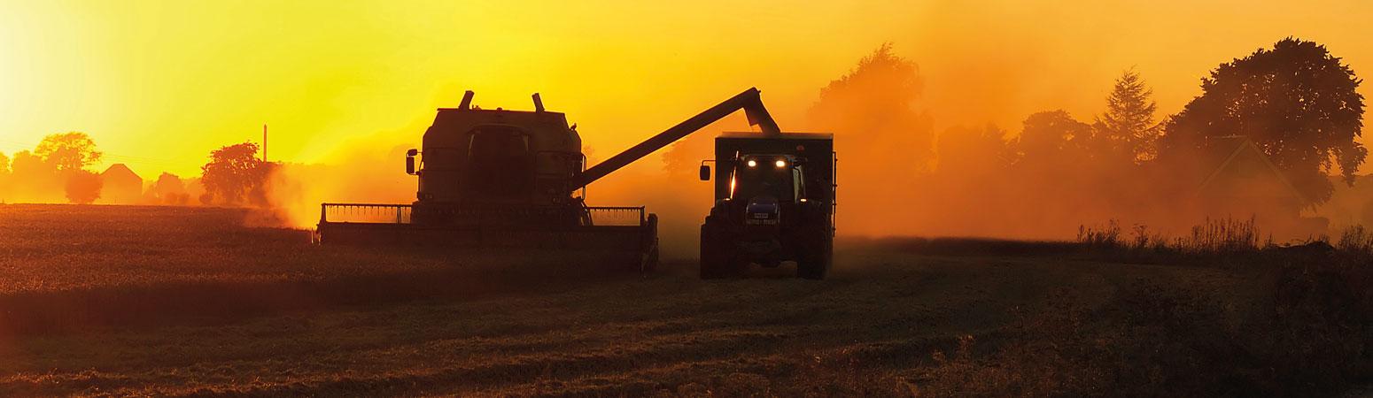 landbruk.jpg
