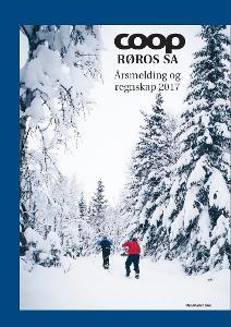 forside årsmelding 2017.jpg