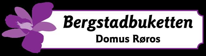 Bergstadbuketten - Logo