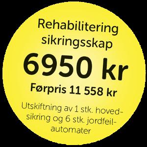 Elektroinstallasjon_boble-sikringsskap.png
