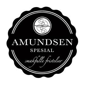 logo-amundsen-spesial.jpg