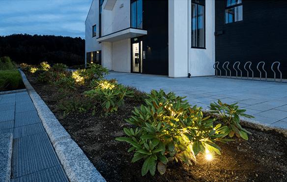 Belysning av blomsterbed