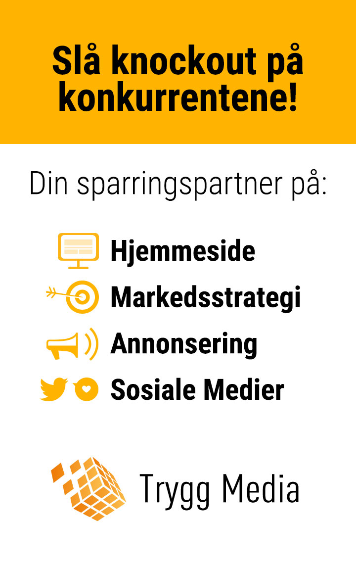 Trygg Media; din sparringpartner på hjemmeside, markedsstrategi, annonsering og sosiale medier.