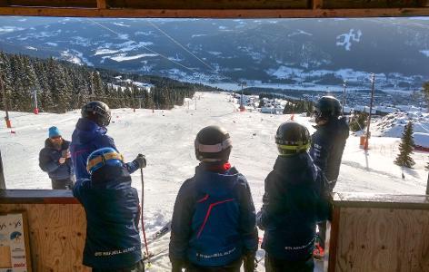 Alpinsesongen