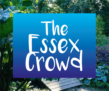 The Essex Crowd - Crowdfunding Workshop during The Art of the Possible Festival