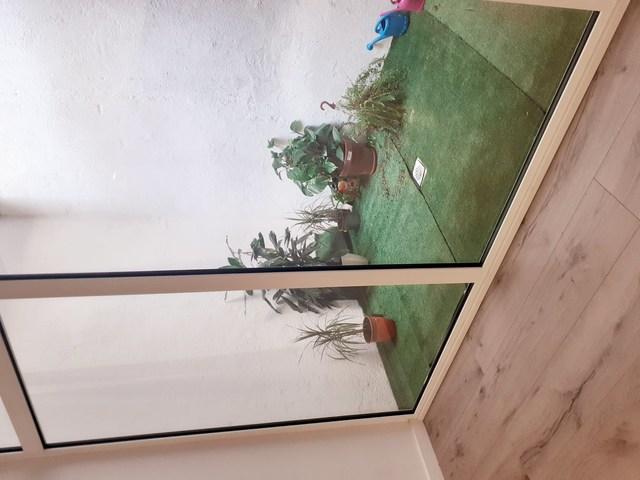 Sala Pati Interior Raval