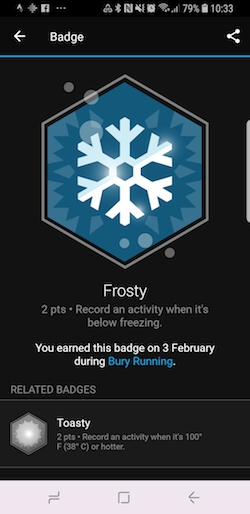 Garmin Frosty badge