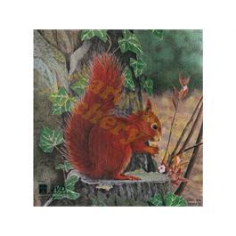 JVD Animal Target Face - Squirrel thumbnail