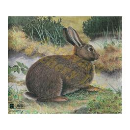 JVD Animal Target Face - Rabbit thumbnail