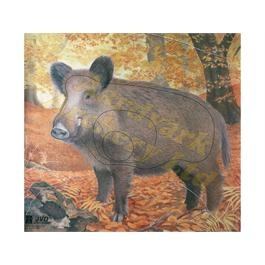 JVD Animal Target Face - Wild Boar thumbnail
