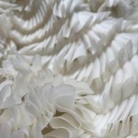 Ribbon Lace Fabrics