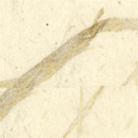 Handmade Lokta Natural Thick Paper 51x76cm 65gsm Image 1