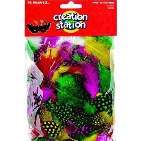 Creation Station Coloured Spotted Feathers Image 1