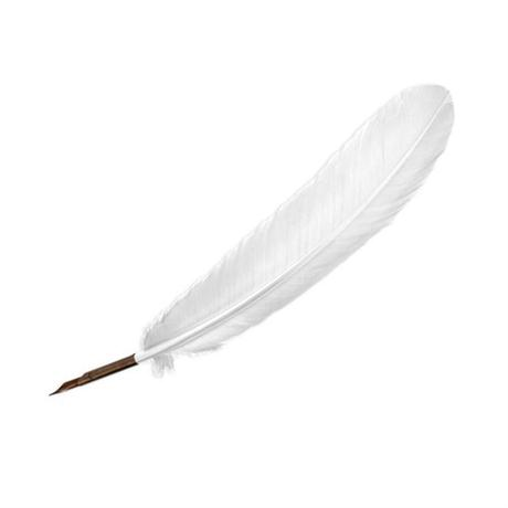 Manuscript White Quill Pen Image 1