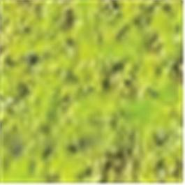 Caran d'Ache Pastel Pencil 232 Moss Green 10% thumbnail