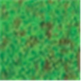 Caran d'Ache Pastel Pencil 234 Moss Green 30% thumbnail